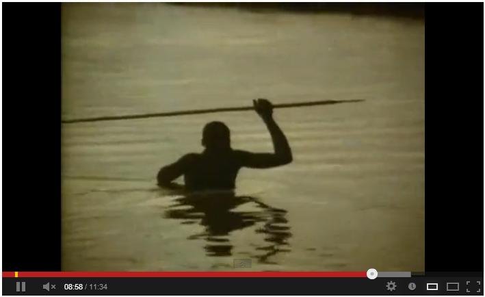 El mono desnudo - Desmond Morris - Sinopsis y Precio