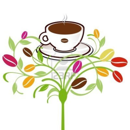 plantas-de-cafe