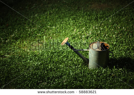 stock-photo-old-metal-watering-can-on-green-grass-at-night-in-the-spot-of-light-58883621
