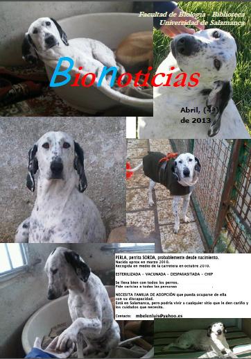 BioNoticias 24 abril